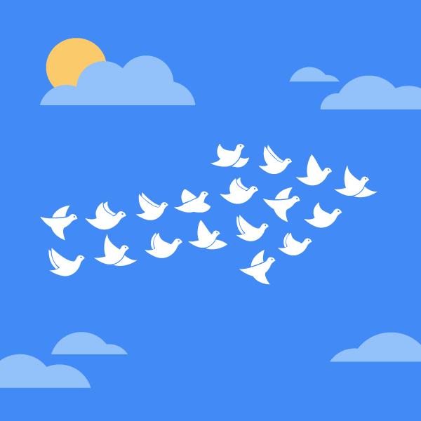 Transferir una web en WordPress de un servidor a otro
